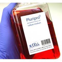 Pluripro® medium