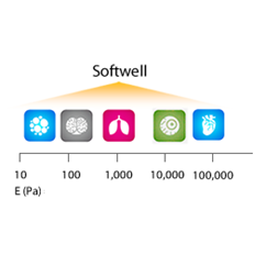 Softwell G™ 96 Glass Bottom Plate, Easy Coat™, High Throughput Screen